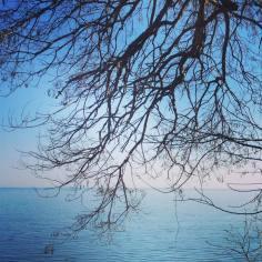 tumblr_p7ji6aQnh71qz8pgfo1_1280